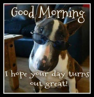 Good Morning, I hope your day turns out great!