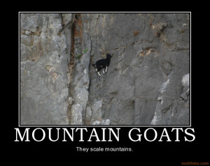 mountain-goats-mountain-goats-mountains-animals-funny-demotivational ...