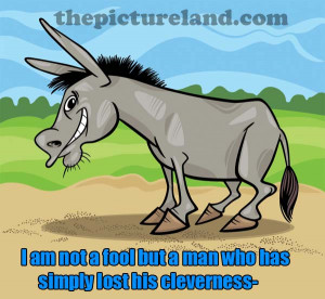 Funny Picture Of Knight On Donkey With Funny Sayings About Bad Times