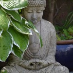 The Context For The Buddha Quotes