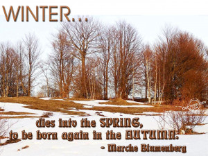 quotes winter quote winter love quotes autumn quotes quotes about ...