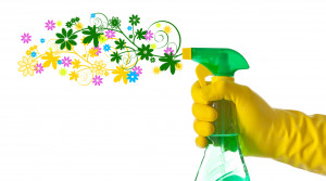 Spring is a Great Time to Make Your Home Clean and Safe