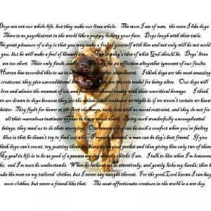 man\'s best friend quotes, LadyDance | Bloguez.com