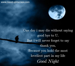 ... Bye to U,But I Will Never Forget to Say thank You ~ Good Night Quote