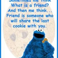 Cookie Monster Quotes About Friends