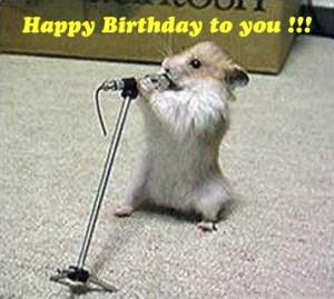 animal birthday funny animal birthday funny animal birthday funny ...
