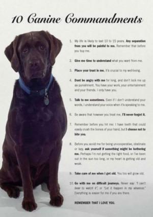 The 10 Canine Commandments