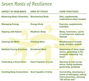 Seven Roots of Resilience