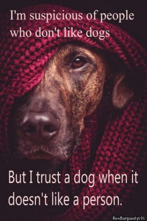 ... of people who don t like dogs but i trust a dog when it doesn t like