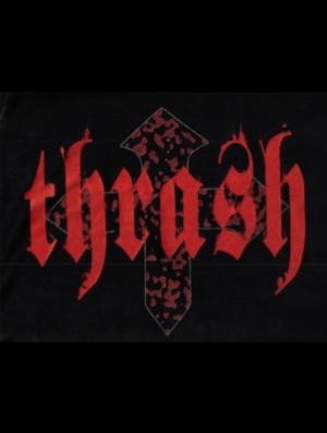 Thrash Metal Odmiana Heavy...