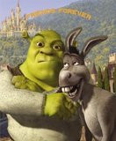 Shrek And Donkey Arguing Quotes. QuotesGram
