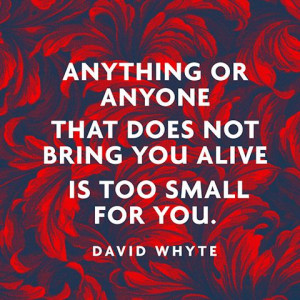 Anything or anyone that does not bring you alive is too small for you ...