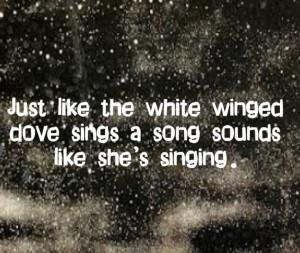 Stevie Nicks - Edge of Seventeen - song lyrics, song quotes, songs ...