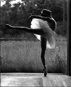 dancer,ballet,beauty,black,and,white,nature,dance ...