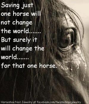 Horse saving crying