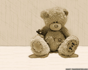 cute teddy bear latest image ill teddy bear hd picture