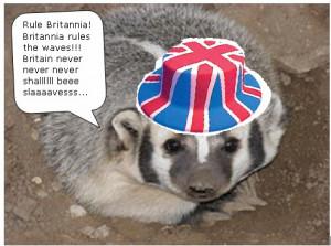 Funny Badger