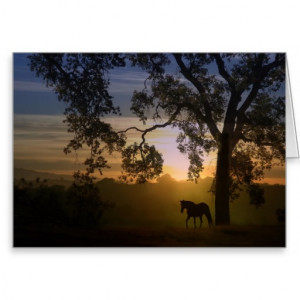 Sympathy Quotes Loss of Horse