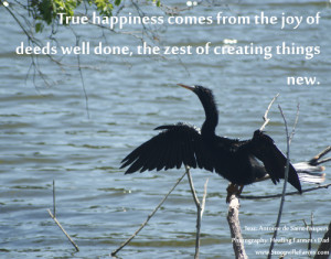 ... from the joy of deeds well done, the zest of creating things new