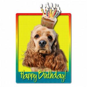 happy birthday spaniel