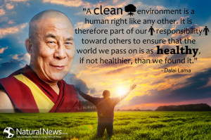 clean environment is a human right like any other. It is therefore ...