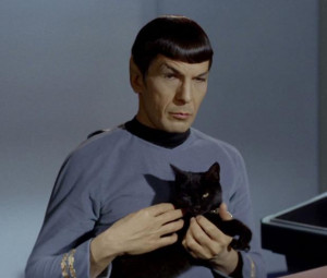 Spock Quotes: 10 Best Leonard Nimoy Sayings As 'Star Trek' Vulcan