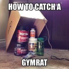 From a fan. Looks like a foolproof plan. TAG your fellow #gymrats to ...