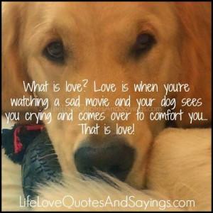 Dog Love Sayings What is love?