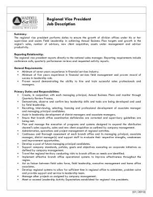 sales and marketing vice president sample job description