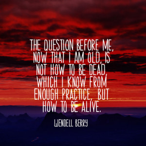 quotes-question-old-wendell-berry-480x480.jpg