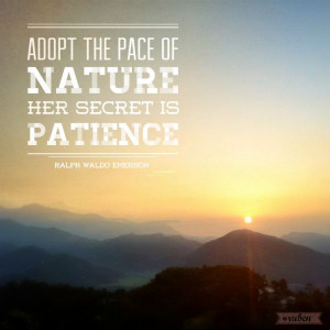 Adopt the pace of nature #quote #nature