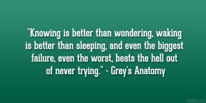 "... the worst, beats the hell out of never trying."" – Grey's Anatomy"