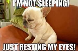 Funny Memes – [I'm Not Sleeping Just Resting My Eyes]