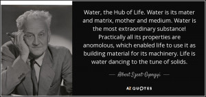 ... . Life is water dancing to the tune of solids. - Albert Szent-Gyorgyi