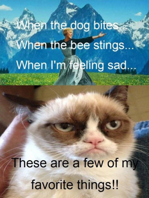Grumpy Cat Quotes For More