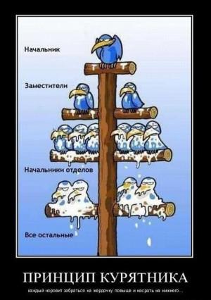 На предприятии могут быть образованы ...