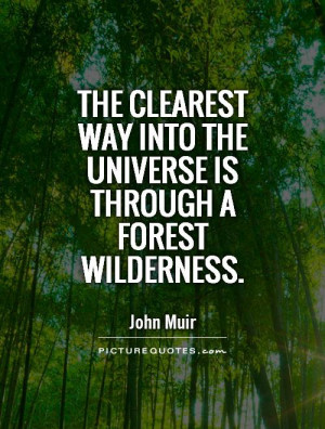 Nature Quotes Universe Quotes Forest Quotes John Muir Quotes
