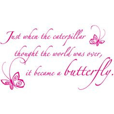 Butterfly quotes / change quotes