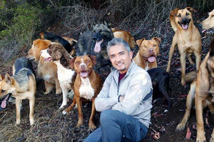 Quotes by César Millán to Help You Raise Your Dog & Your Kids ...