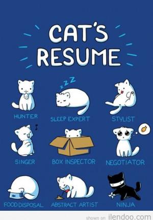 2012-funny-cute-comic-cartoon-illustration-cats-resume-ilendoo.com ...