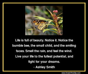Life is full of beauty . Notice it.