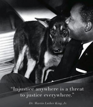 Foster Dogs NYC: Remembering MLK Jr.