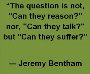 Quote from Jeremy Bentham to Kant, animals do matter