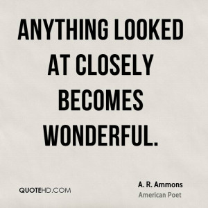 ammons-a-r-ammons-anything-looked-at-closely-becomes.jpg