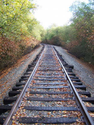 here is a picture of a real life train track the tracks look just like ...