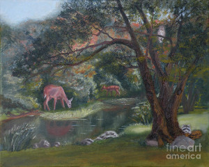 Forest Animals Art Prints