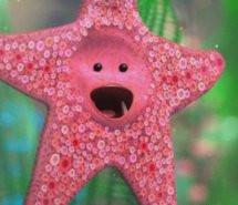 cute-finding-nemo-pink-starfish-238917.jpg