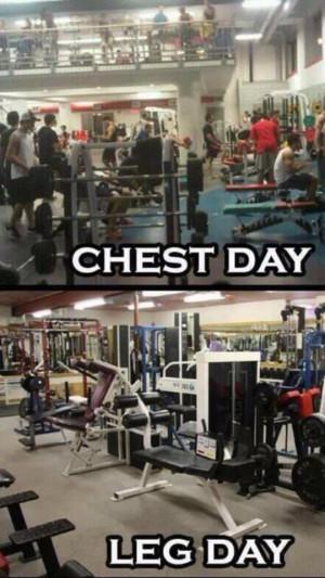 Gym: Chest & Leg Day