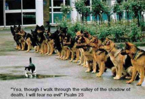 walk through the valley of the shadow of death