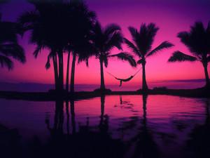 Colors color purple